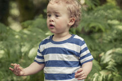 Toddler in woods Royalty Free Stock Photography