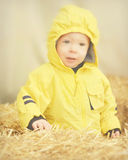Toddler, Yellow Coat, Hay Bales Stock Images