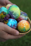 Toddlers hands holding easter eggs Royalty Free Stock Images