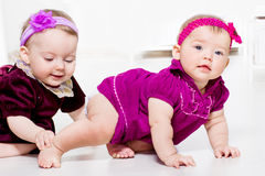 Toddlers playing. Two cute female toddlers playing stock image