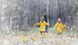 Toddlers on a walk in the autumn park. First frost and the first stock photos