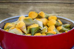 Toddy palmcakes in een rode pot stock foto