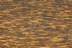 Toddypalmen-Holzplanke Lizenzfreies Stockfoto