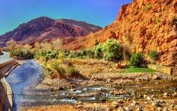 Todgha峡谷,一个峡谷在阿特拉斯山脉 摩洛哥 免版税库存照片