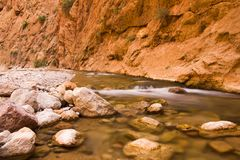 Todgha Gorge is canyon in Atlas Mountains, near Tinghir, Morocco. Todgha Gorge is canyon in Atlas Mountains, near Tinghir in Morocco royalty free stock photo