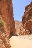 Todgha Gorge, Morocco royalty free stock photography