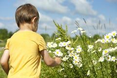 Todler grabbing a flower Royalty Free Stock Photos