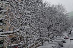Todo o branco sob a neve, cenário do inverno nas árvores cobertas com as nevadas fortes e rua Imagens de Stock