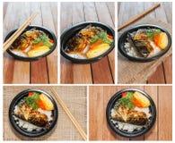 Todo o estilo japonês do alimento da coleção Fotografia de Stock