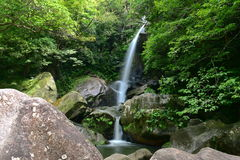 Todoroki falls in Okinawa. Japan Royalty Free Stock Images