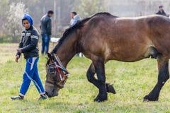 Todorovden nel villaggio di Kalugerovo, Bulgaria Fotografie Stock Libere da Diritti