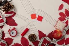 Todos para coser - tela, modelos y accesorios de costura Fashio Fotos de archivo libres de regalías