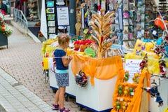 TODTMOOS, GERMANIA - 22 LUGLIO 2018: Bambino che esamina i molti souv fotografie stock libere da diritti