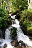 Todtnau waterfalls, Black forest, Germany Stock Photo