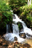 Todtnau waterfalls, Black forest, Germany Stock Photography
