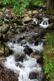 Todtnau waterfalls, Black forest, Germany Stock Images