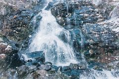 Todtnauer waterfalls at wintertime. Black forest, Germany Europe Royalty Free Stock Photo