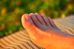 Toe. In each leg is five inches and inches of each finger is a more unequal Stock Photography