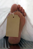 Toe tag. Caucasian foot with a toe tag, covered with a white sheet on a metal surface Royalty Free Stock Photo