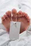Toe Tag Royalty Free Stock Image