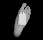 Toe Tag Isolated on Black Royalty Free Stock Photography