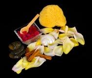 Toebehoren voor kuuroord met zoute bad, kaneel, stenen en bloemblaadjes Stock Fotografie