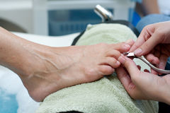 Toenail clipping by manicurist at salon Royalty Free Stock Photo