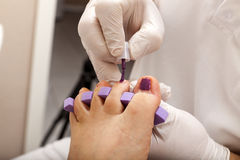 Toenails in Fuchsia Royalty Free Stock Photo