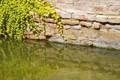 Toenemend vocht op een bakstenen muur in een kanaalhoogtepunt van water royalty-vrije stock foto