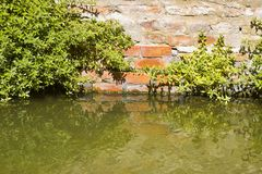 Toenemend vocht op een bakstenen muur in een kanaalhoogtepunt van water stock foto's
