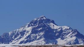 Toenemend Wolf Mountain, Groot en Gewaagd stock afbeelding