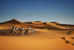 Toerisme in de woestijn van de Sahara, de reizen van de Kameeltrekking voor toeristen Royalty-vrije Stock Foto's