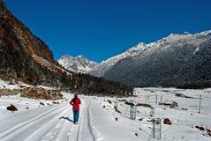 Toerist bij Yumthang-Vallei royalty-vrije stock foto
