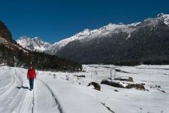 Toerist bij Yumthang-Vallei royalty-vrije stock afbeeldingen