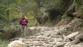 Toerist in de Himalayan-bergen stock footage