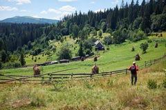 Toerist die alleen in bergen met rugzak wandelen Royalty-vrije Stock Fotografie