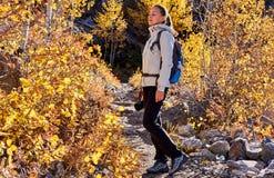 Toerist die in espbosje bij de herfst wandelen royalty-vrije stock afbeelding