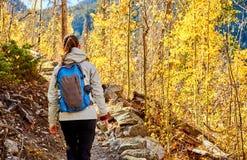 Toerist die in espbosje bij de herfst wandelen royalty-vrije stock foto