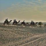 Toerist die Kameel van rit in zandduinen genieten van Jaisalmer, Rajasthan, India, Azië Stock Afbeelding