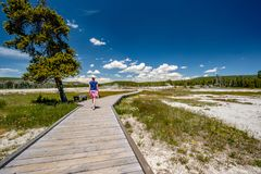 Toerist die met camera in Yellowstone wandelen Royalty-vrije Stock Foto's