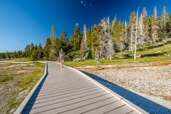 Toerist die met rugzak in Yellowstone wandelen Stock Foto