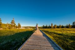 Toerist die met rugzak in Yellowstone wandelen Stock Afbeelding