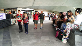 Toerist die van de Mening van het Oriëntatiepunt van Singapore genieten Stock Foto's