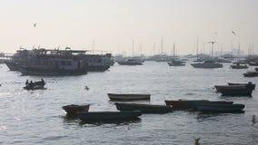 Toerist en vissersboten door de haven stock video