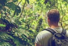 Toerist met rugzak in de wildernis stock fotografie