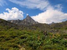 Toerist op de alpiene weide Stock Foto's
