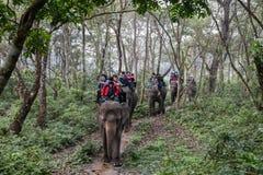 Toerist op een olifantssafari in het Nationale Park van Chitwan, Nepal Stock Foto