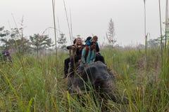 Toerist op een olifantssafari in het Nationale Park van Chitwan, Nepal Royalty-vrije Stock Afbeelding