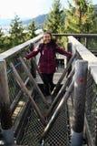 Toerist op het Vooruitzicht van Lipno van sleepbomen stock afbeelding