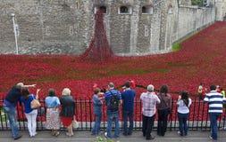 Toeristen bij de Toren van Londen die in Poppy Installatio bekijken Stock Afbeeldingen